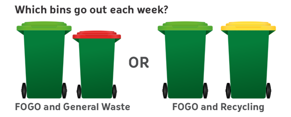 Graphic displaying four coloured bins.