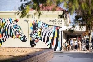 Zebra mural at Ootong and Lincoln in South Fremantle